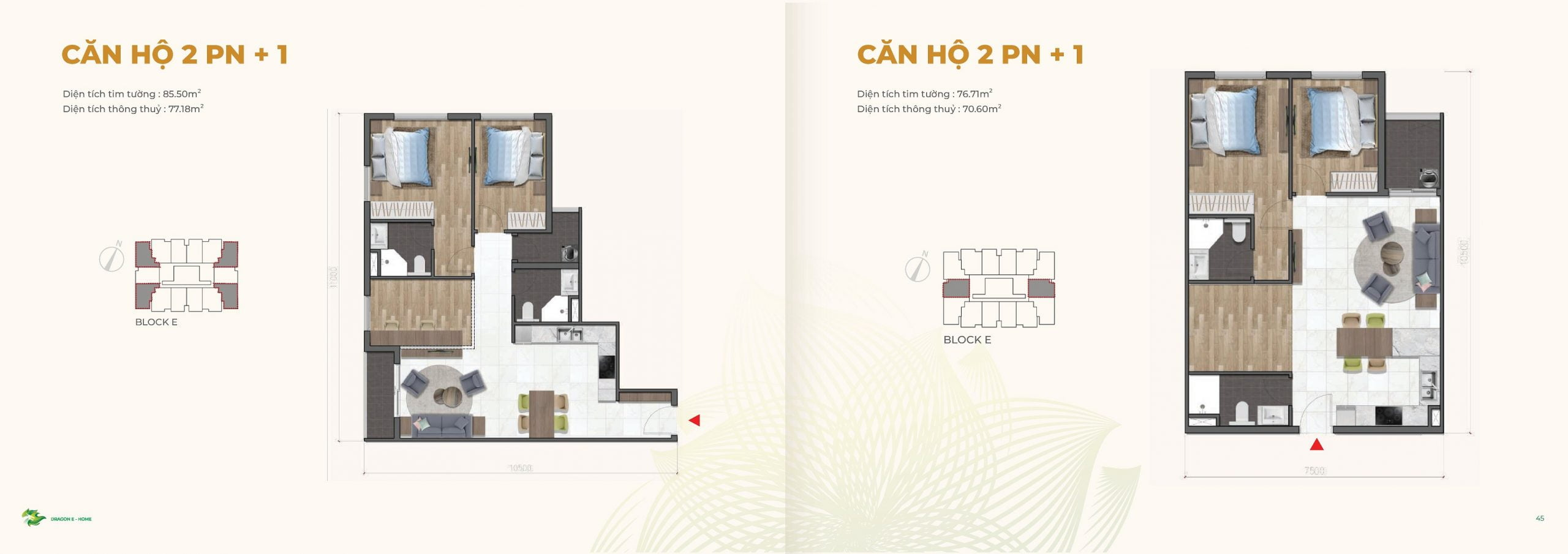 can ho 2PN +1 Dragon Ehome
